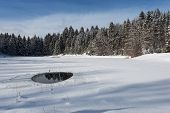 frozen lake with little water hole surrounded of snowy trees