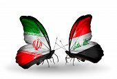 foto of iraq  - Two butterflies with flags on wings as symbol of relations Iran and Iraq - JPG