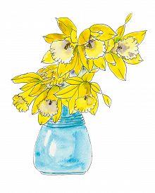 image of daffodils  - Daffodil flowers in a blue vase. Watercolor of daffodil flowers in a blue vase. - JPG