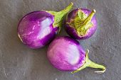 picture of aubergines  - Three Baby size aubergines eggplants on stone gray background top view - JPG