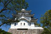 pic of ninja  - The original Ninja castle of Iga Ueno also known as  - JPG