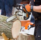 pic of man chainsaw  - Close up of male hands cutting trunk with chainsaw - JPG