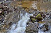 pic of bohemia  - rapidly flowing water South Bohemia Czech Republic - JPG