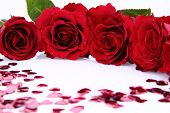 Red roses and confetti background