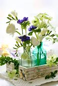 ranunculus, anemone, freesia and hellebore in glass bottles