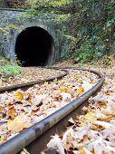 Train Tunnel In Autumn