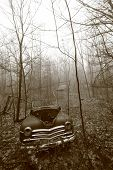 Old Truck Left To Rot In The Woods