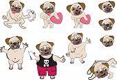Pugs Cartoon