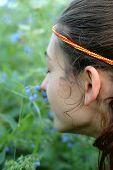 Gefühl die wildflowers