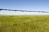 stock photo of barbed wire fence  - Barbed Wire Fence on Wyoming Landscape with Blue Sky - JPG