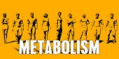 Metabolism Concept With Business Professionals Standing in a Row poster
