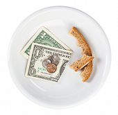 Economy Crisis Of Usa Dollar Currency Concept Photo With Bread Crust On White Plate