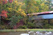 The Swann-Joy Covered Bridge
