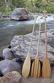 three wooden canoe paddles on shore of mountain river - Cache la Poudre RIver near Fort Collins, Colorado