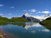 Постер, плакат: Швейцарский красоты Шрекхорн и Веттерхорн от Bachalpsee уровня