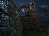 Castle By Moonlight