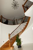 Curved Timber Stairs vertical