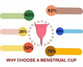 Infographics Why Choose A Menstrual Cup Flat Illustration. poster
