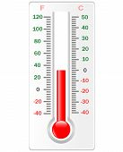 Thermometer. Vector. Celsius And Fahrenheit