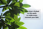 Inspirational Motivational Quote-your Time Is Limited On This Earth, So Make Every Moment Your Best. poster