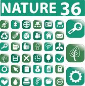 36 nature glossy buttons. vector