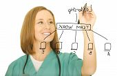 Nurse Drawing Leadership Chart
