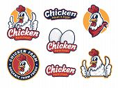 Set Chicken Label For Business Template Illustration. Chicken Mascot Logo Vector, Illustration Of Ch poster