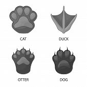 Vector Design Of Wildlife And Trace Symbol. Set Of Wildlife And Walk Stock Symbol For Web. poster