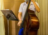 Man Playing Contra-bass With Music Notation. Double Bass Performer. Musician With String Instrument poster