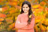 Little Girl Smiling Happy Child Gorgeous Long Hair Maple Leaves. Cozy Autumn Day. Kid Enjoy Autumn O poster