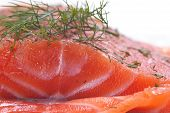pic of lax  - Close-up of a whole piece of smoked salmon with dill ** Note: Shallow depth of field - JPG