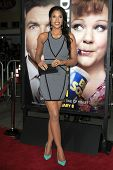 LOS ANGELES - FEB 4:  Kali Hawk arrives at the 'Identity Theft' premeire at the Village Theater on F