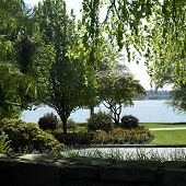 Park And Water