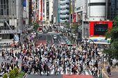 Travessia de pedestres de Tóquio