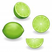Limes, Four Views