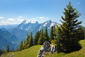 blue mountains - view from Kaltmauer to blue mounts -Hhochschwab Alpen - Austria