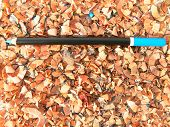 Sleeping Pencil