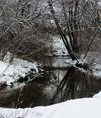 Winter's Creek