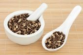 stock photo of qi  - Angelica root used in chinese and natural alternative herbal medicine - JPG