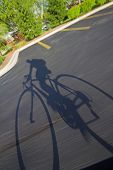 Bike Rider Shadow