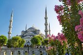The Blue Mosque (Sultanahmet Camii), Istanbul, Turkey