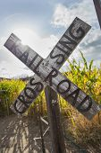 Antique Country Rail Road Crossing Sign Near a Corn Field in a Rustic Outdoor Setting.