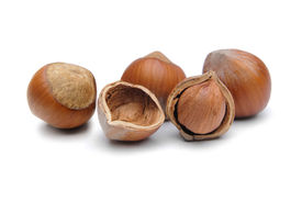 picture of cobnuts  - Hazelnuts isolated on a white background - JPG