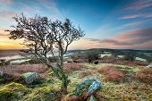 Frosty Sunrise At Helman Tor Hdr
