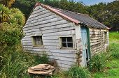 Old Weathered Wooden Hut In Woodland