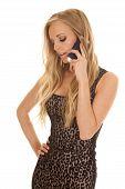 Woman Cheetah Print Dress Phone Talk Look Down