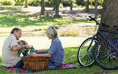 Happy couple enjoying coffee during picnic in park