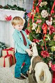 Little boy stands with hobby-horse near decorated christmas tree