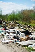 Garbage Dump On The Nature