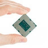 Computer's Processor In Hand Isolated On A White Background
